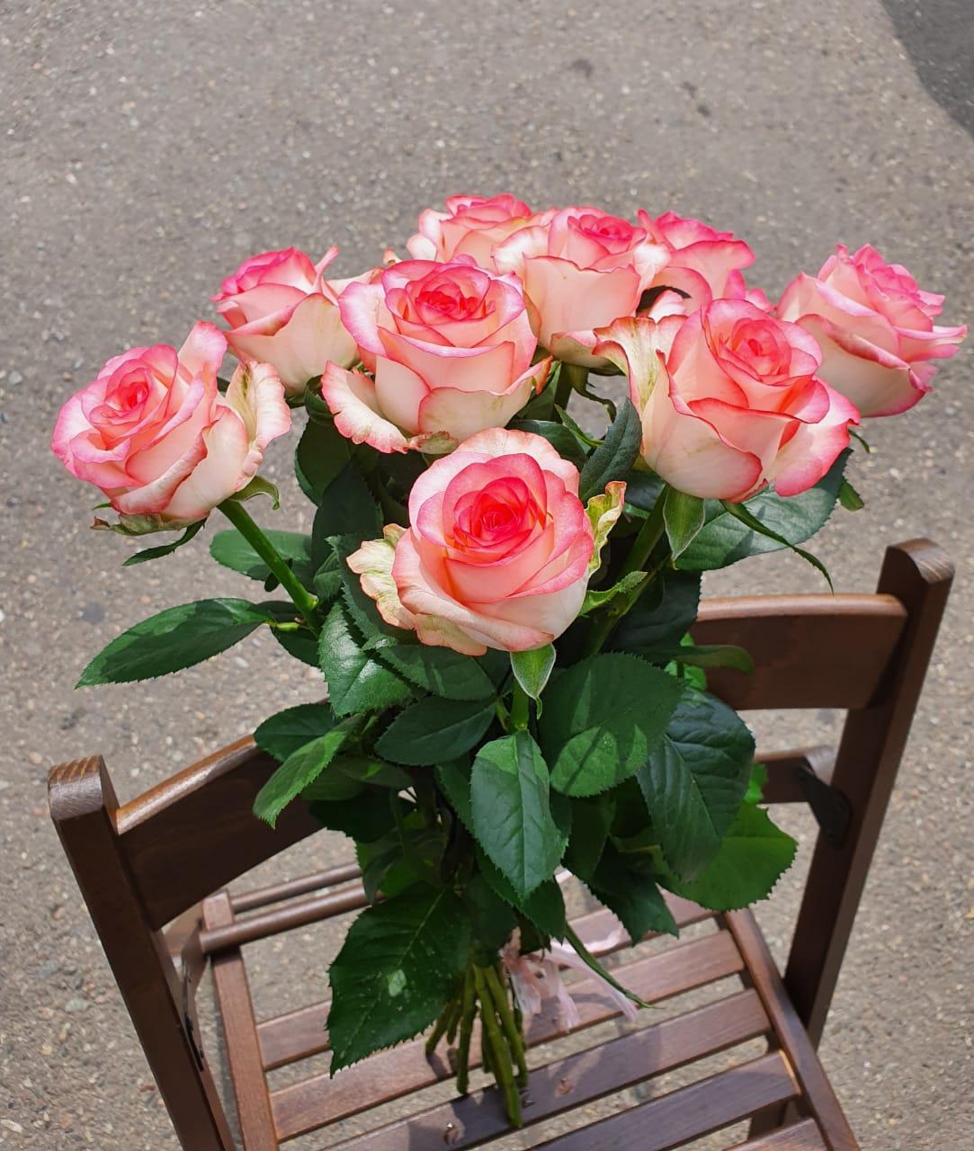 Розы Джумилия букет из 9 шт.