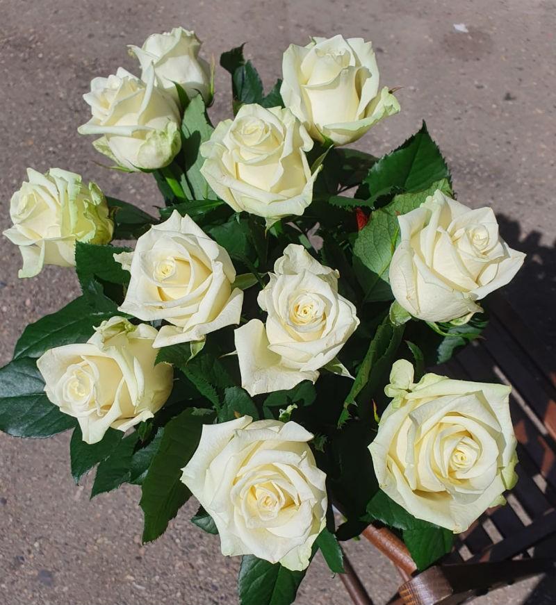 Букет из 11 белых роз от лучших местных производителей