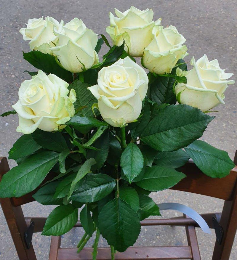 Букет из 7 белых роз с крупным бутоном.