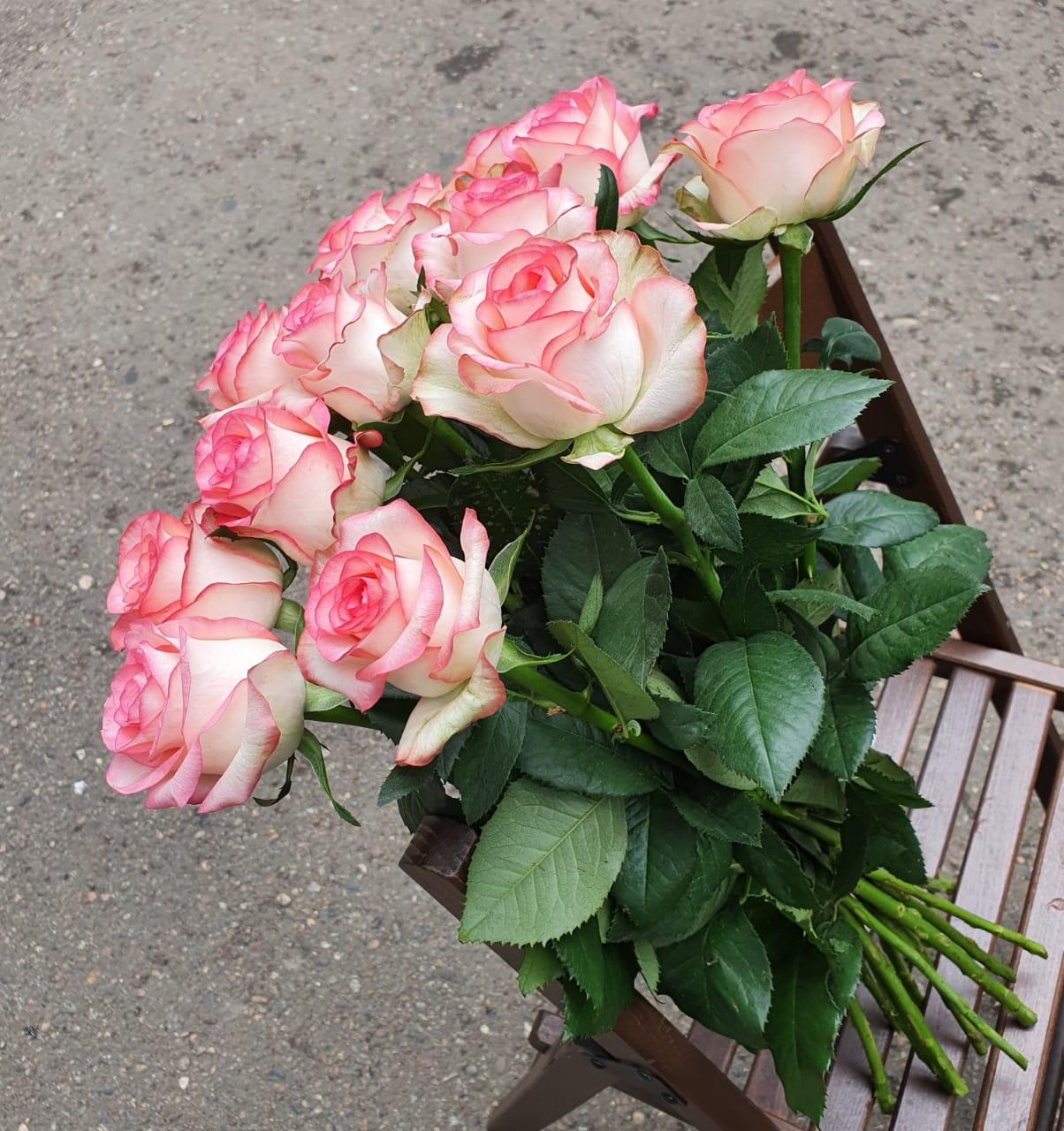 Розы Джумилия букет из 15 шт.