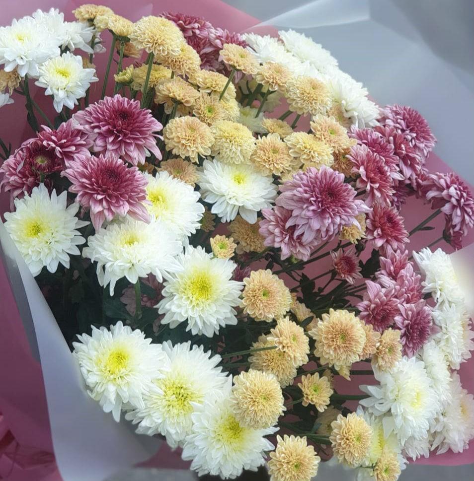 13 веточек мелкоцветной хризантемы