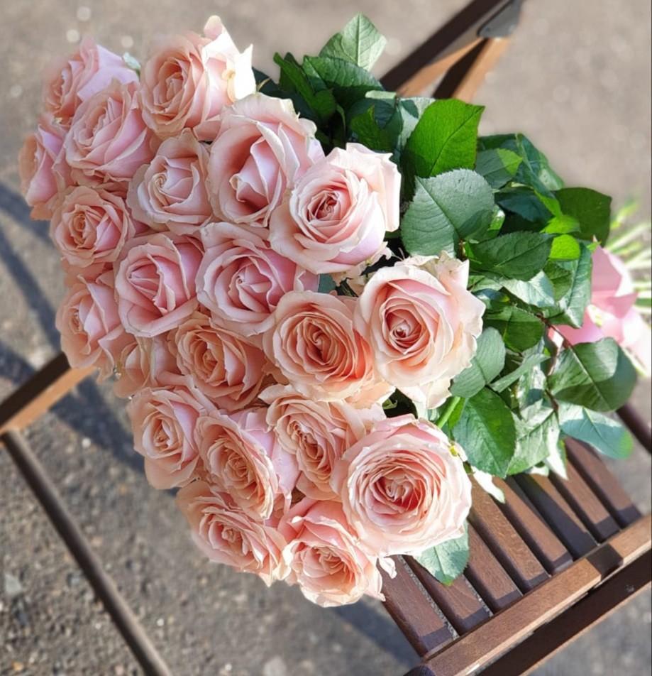 Нежный букет из 21 розовой розы